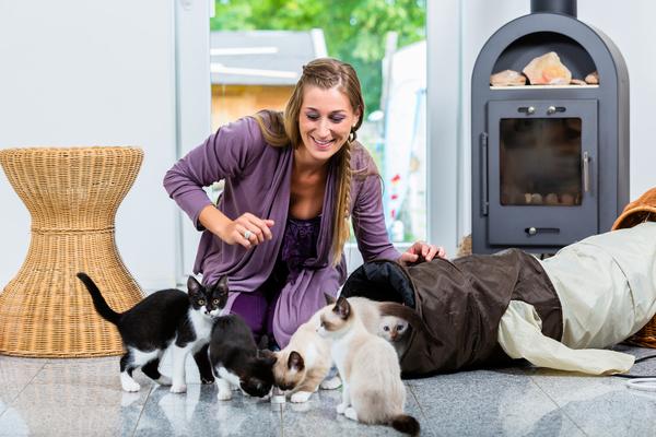 Como ser uma cuidadora de animais - Pet Sitter